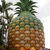 Big Pineapple on the Sunshine Coast