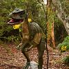 Australovenator Dinosaur